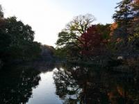 2014.11.28まで井の頭公園紅葉 064 (1024x769).jpg